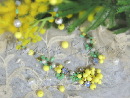 ヨーロッパに春を告げる花・ミモザ